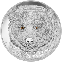1 kg | Kilo 2016 Royal Canadian Mint In the eyes of The spirit Bear Silver Coin
