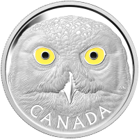 1 kg | Kilo 2014 Royal Canadian Mint In The Eyes of the Snowy Owl Silver Coin
