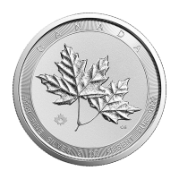 2 oz Random Year Canadian Twin Maple Silver Coin