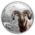 2 oz 2020 Royal Canadian Mint Imposing Icons | Bighorn Sheep Colorized Silver Coin